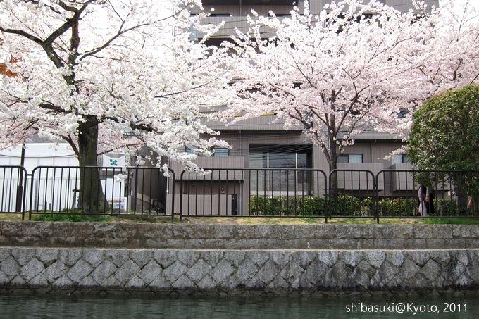 20110411_Kyoto-151_搭十石舟遊岡崎疏水道_1.JPG