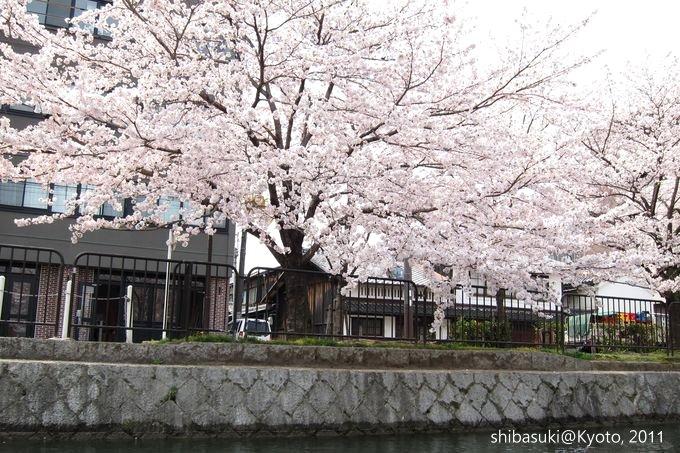 20110411_Kyoto-152_搭十石舟遊岡崎疏水道_1.JPG