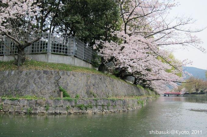 20110411_Kyoto-161_搭十石舟遊岡崎疏水道_1.JPG