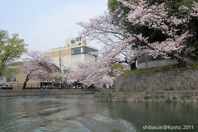 20110411_Kyoto-163_搭十石舟遊岡崎疏水道_1.JPG