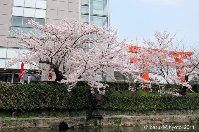 20110411_Kyoto-165_搭十石舟遊岡崎疏水道_1.JPG