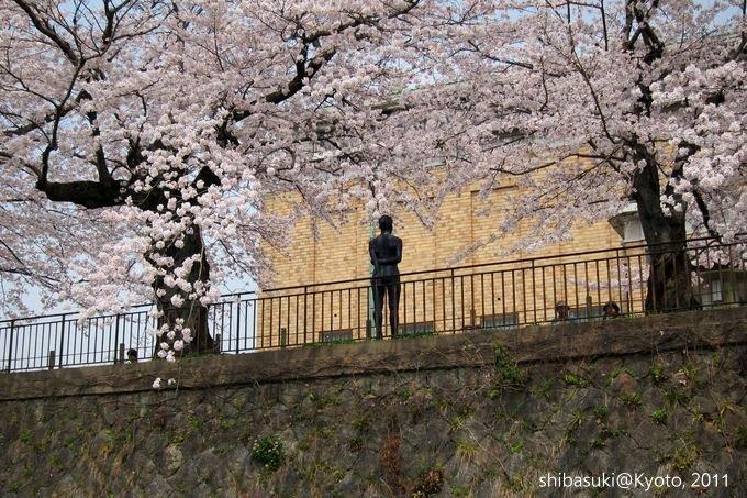 20110411_Kyoto-168_搭十石舟遊岡崎疏水道_1.JPG