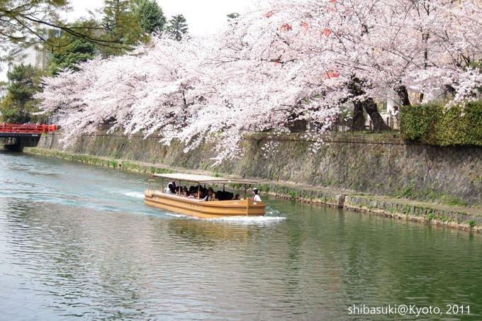 20110411_Kyoto-176_岡崎疏水道_1.JPG