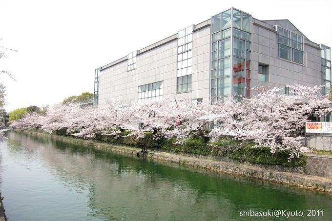 20110411_Kyoto-195_岡崎疏水道_1.JPG