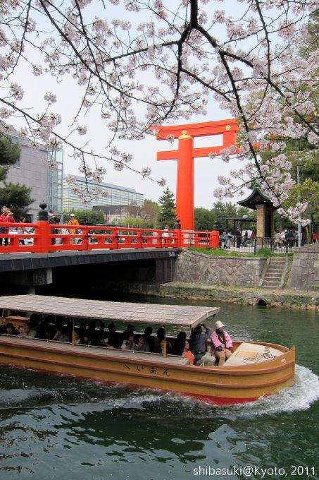 20110411_Kyoto-202_岡崎疏水道_1.JPG