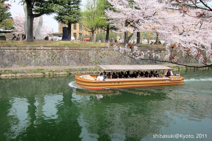 20110411_Kyoto-210_岡崎疏水道_1.JPG