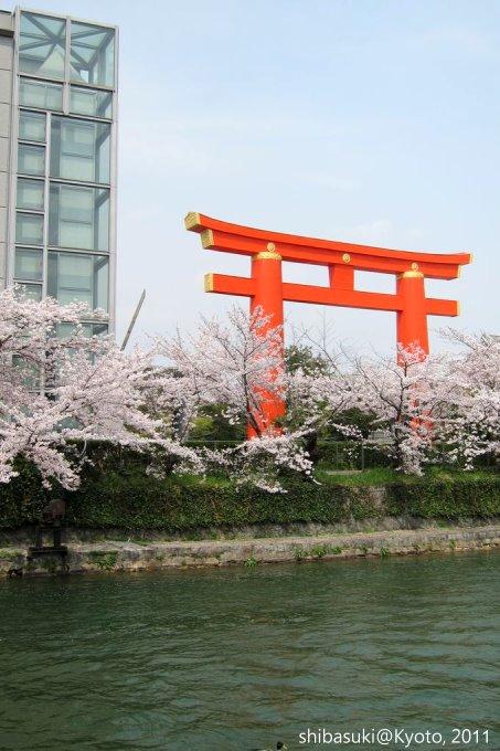 20110411_Kyoto-239_岡崎疏水道_1.JPG