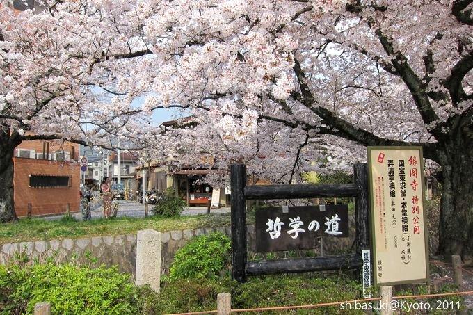 20110411_Kyoto-254_哲學之道_1.JPG