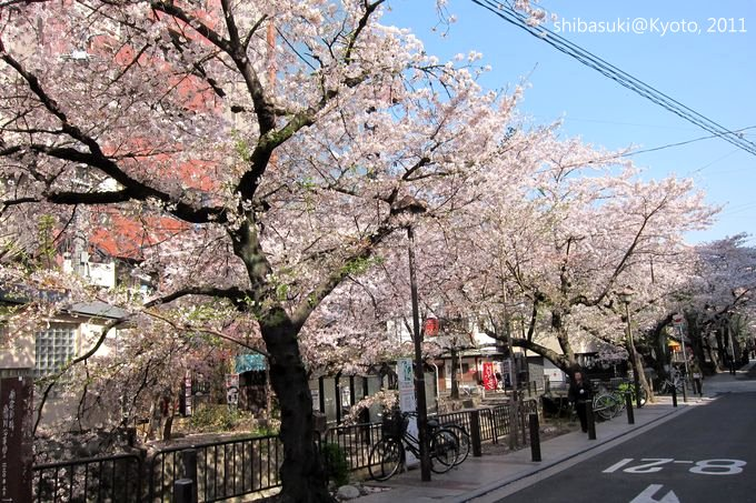20110412_Kyoto-1_高瀨川_1.JPG
