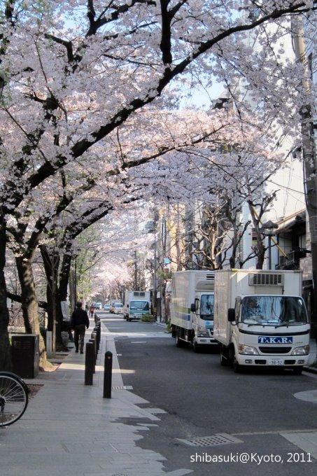 20110412_Kyoto-6_高瀨川_1.JPG