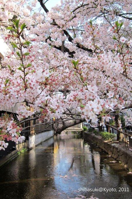 20110412_Kyoto-9_高瀨川_1.JPG