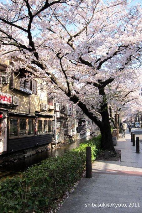 20110412_Kyoto-14_高瀨川_1.JPG