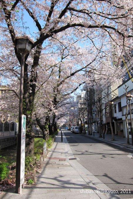 20110412_Kyoto-28_高瀨川_1.JPG