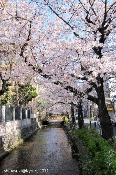 20110412_Kyoto-33_高瀨川_1.JPG