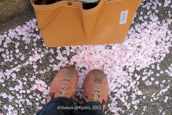 20110412_Kyoto-38_高瀨川_1.JPG