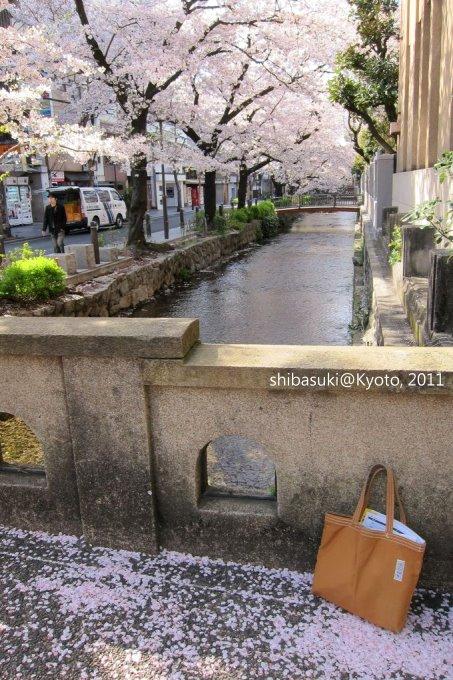 20110412_Kyoto-44_高瀨川_1.JPG