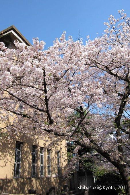 20110412_Kyoto-46_高瀨川_1.JPG