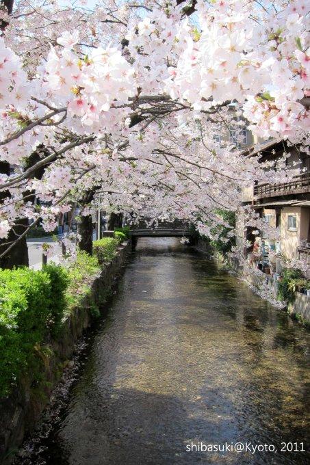 20110412_Kyoto-52_高瀨川_1.JPG