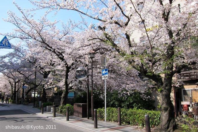20110412_Kyoto-55_高瀨川_1.JPG