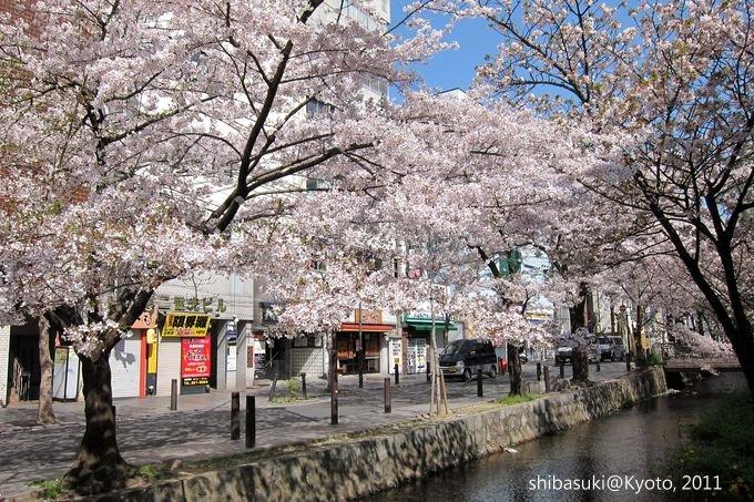 20110412_Kyoto-69_高瀨川_1.JPG
