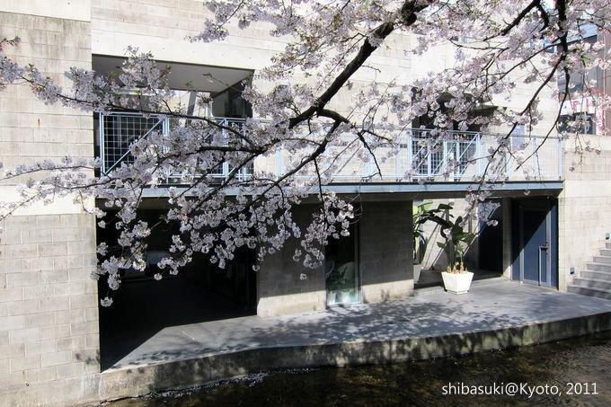 20110412_Kyoto-74_高瀨川_1.JPG