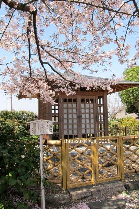 20110412_Kyoto-85_宇治 橋寺放生院_1.JPG