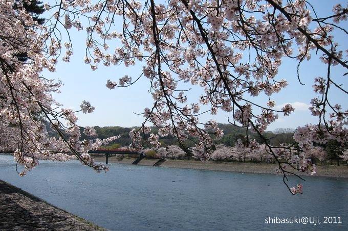 20110412_Kyoto-98_宇治_1.JPG