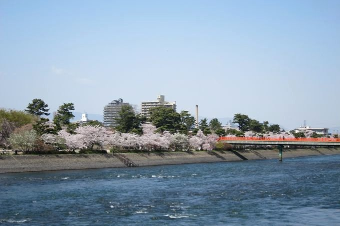 20110412_Kyoto-124_宇治 朝霧橋_1.JPG