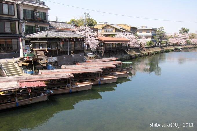 20110412_Kyoto-153_宇治 中之島_1.JPG