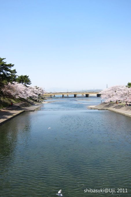 20110412_Kyoto-192_宇治 宇治橋_1.JPG