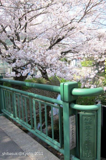 20110412_Kyoto-229_山科 洛東高等學校_1.JPG