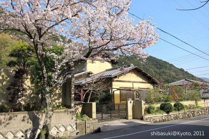 20110412_Kyoto-301_山科_1.JPG