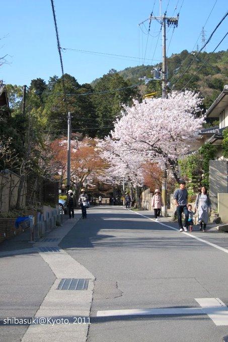 20110412_Kyoto-302_山科_1.JPG