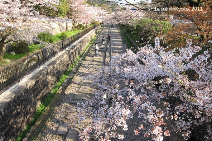 20110412_Kyoto-321_就上鐵道_1.JPG