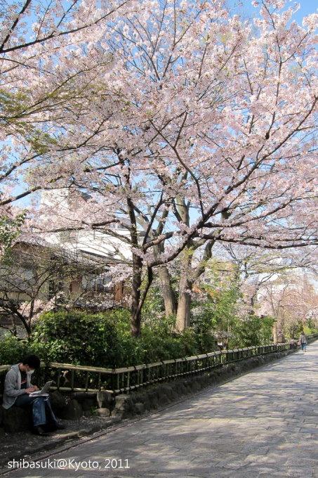 20110413_Kyoto-16_白川巽橋_1.JPG