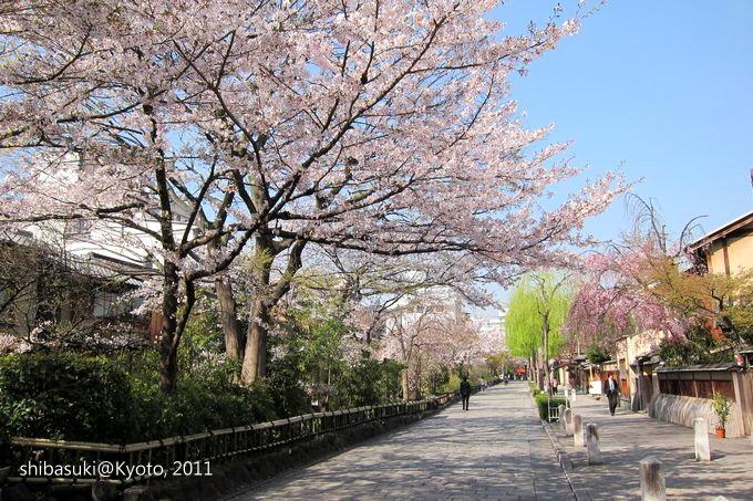 20110413_Kyoto-18_白川巽橋_1.JPG