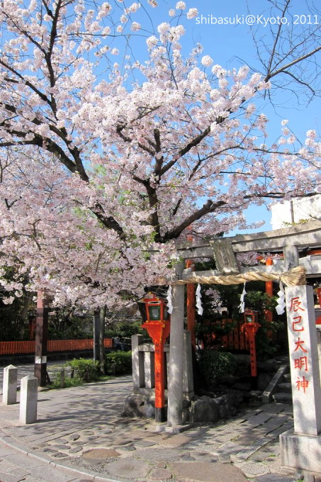 20110413_Kyoto-21_白川巽橋_1.JPG