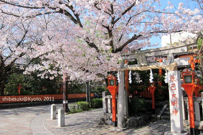 20110413_Kyoto-22_白川巽橋_1.JPG