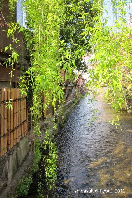 20110413_Kyoto-27_白川巽橋_1.JPG