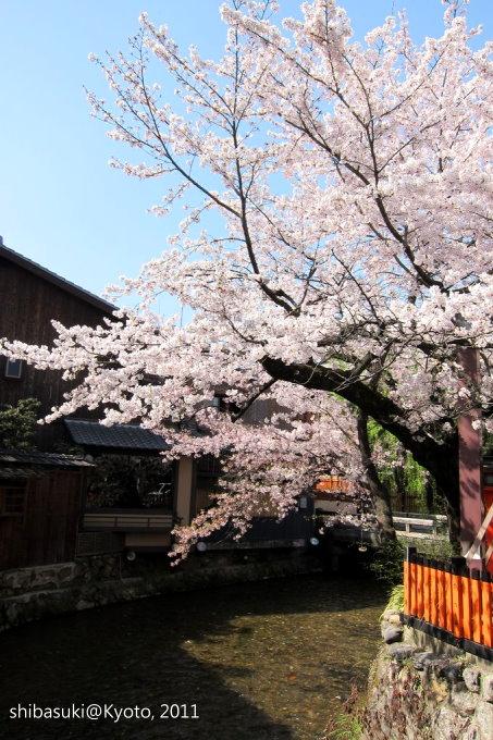 20110413_Kyoto-28_白川巽橋_1.JPG