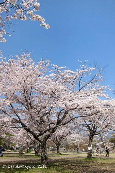 20110413_Kyoto-44_嵐山_1.JPG