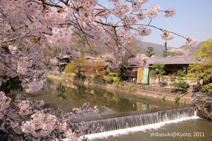20110413_Kyoto-50_嵐山_1.JPG