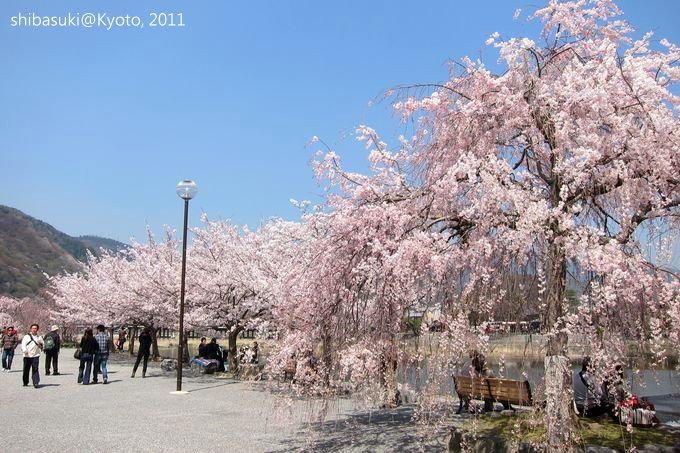 20110413_Kyoto-67_嵐山公園 中之島_1.JPG