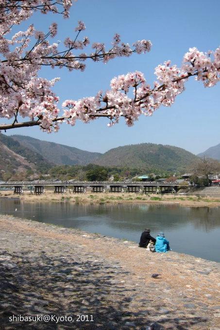 20110413_Kyoto-86_嵐山公園 中之島_1.JPG