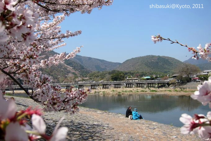 20110413_Kyoto-100_嵐山公園 中之島_1.JPG