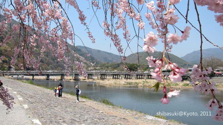 20110413_Kyoto-121_嵐山公園 中之島_1.JPG