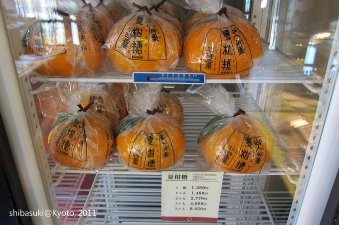20110413_Kyoto-171_嵐山 老松_1.JPG
