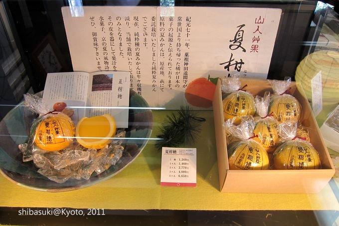 20110413_Kyoto-172_嵐山 老松_1.JPG
