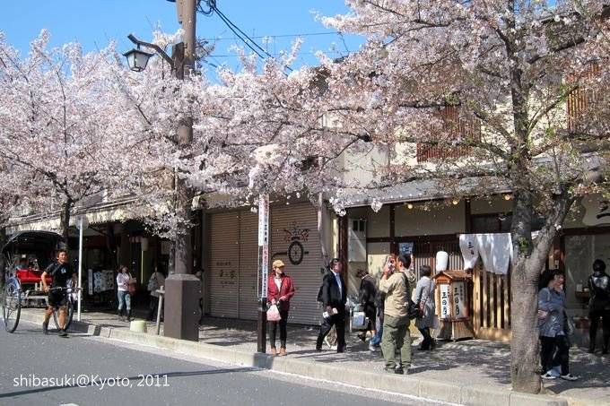 20110413_Kyoto-202_嵐山_1.JPG
