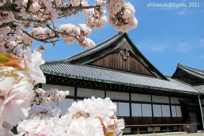 20110414_Kyoto-156_二條城_1.JPG